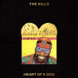The Kills vs George Clinton - Heart of an Atomic dog (Bastard Batucada Auuu Mashup)