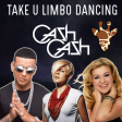 Take U Limbo Dancing (Cash Cash vs Daddy Yankee vs Robyn vs Kelly Clarkson)