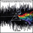 DJ Useo - If Comfortably Numb Looks Could Kill ( Pink Floyd vs Transvision Vamp )