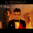 DJ CROSSABILITY - A Mashup Something Just Like This (The Chainsmokers & Coldplay vs. 14 Artists)