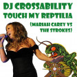 DJ CROSSABILITY - Touch My Reptilia (Mariah Carey vs. The Strokes)