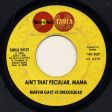 Ain't that peculiar, Mama (Marvin Gaye vs Dreadsquad)