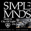 Simple Minds at Work (Simple Minds + Men At Work + Depeche Mode + Mandi Seekings + Big Country)