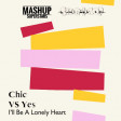 SKiBiLiBoP & Mashup Superstars - I'll Be Owner Of A Lonely Heart (Yes vs Chic)