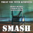 Treat You With Kindness (Shawn Mendes vs. Charlie Puth vs. Selena Gomez)