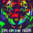 Survivor feat. The Mad Stuntmen - Eye of the Tiger ( Mumdy 'I like 2 move it ' Remix )