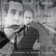 The Sorry Sound Of Silence ( Simon & Garfunkel vs Kollektiv Turnstrasse vs Pig&Dan )