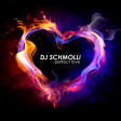DJ Schmolli - Perfect Love [2012]