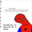 Arachnologist (Coldplay vs System Of A Down)