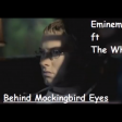 Behind Mockingbird Eyes (Eminem vs The Who)