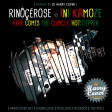 Rinocerose Vs Ini Kamoze - Here Comes The Cubicle Hotstepper (Dj Harry Cover Mashup)