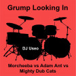 Grump Looking In ( Morcheeba vs Adam Ant vs Mighty Dub Cats )