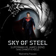 Sky of Steel (Adele VS Superman) (2013)