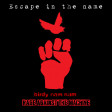 Escape in the name (RATM VS Birdy Nam Nam) (2009)
