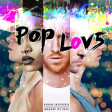 Robin Skouteris - PopLove 5  (Mashup Of 2016)