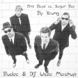 Pink Floyd vs. Sugar Ray - Fly Young (Rudec & DJ Useo Mashup)
