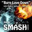 Burn Love Down (Robert Parker ft. Maethelvin vs. Linkin Park)