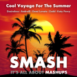 Cool Voyage For The Summer (Desireless, AndreiD vs. Demi Lovato vs. Zedd, Katy Perry)