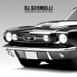 DJ Schmolli - Chasing Cars Into You
