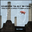 DJ Useo - Learning To Fly So Cool ( Pink Floyd vs Spega vs Hernan Bass )