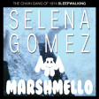 """Sleepwalking Wolves"" (Marshmello ft Selena Gomez vs. The Chain Gang of 1974)"