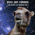 DJ Useo - Beds Are Turning ( The Byrds vs Midnight Oil )