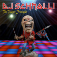 DJ Schmolli - The Trooper Freestyler [2018]