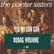 Robag Wruhme vs Pointer Sisters - Yes yes we can can (Bastard Batucada Simsim Mashup)