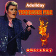 Tennessee fire -  (Adele vs Johnny Hallyday) - 2011