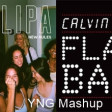 New Flashback (Calvin Harris Vs. Dua Lipa)