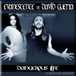 Dangerous Life (Evanescence vs David Guetta ft Sam Martin)