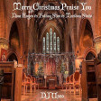 DJ Useo - Merry Christmas Praise You ( Nina Hagen vs Fatboy Slim vs Maribou State )