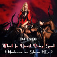 What Is Devil Pray Soul ( Madonna vs Stereo MCs )