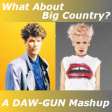 DAW-GUN - What About Big Country (Pink vs Big Country)