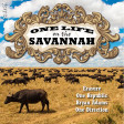 One Life On The Savannah (Erasure vs One Republic vs Bryan Adams vs One Direction)