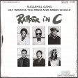 Rapper in C (Lily Wood & the Prick & Robin Schultz vs the Sugarhill Gang)