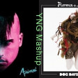 Animal Days Are Over (Neon Trees Vs. Florence + The Machine)