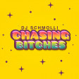 DJ Schmolli - Chasing Bitches