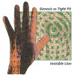 Xam - The Invisible Lion (Tight Fit vs. Genesis)