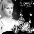 DJ Schmolli - Stay The Night With The Police