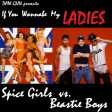 DAW-GUN - If You Wannabe My Ladies (Beastie Boys vs Spice Girls)