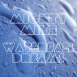 Waterfall dreams (Coldplay / Gabrielle) (2011)