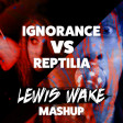 Reptilia Is Your New Best Friend (Paramore vs. The Strokes)