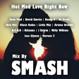 Hot Mad Love Right Now (Sean Paul, David Guetta ft. Becky G vs. Multiple Artists)