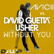 Avicii vs. David Guetta & Usher - Without You (LUP Mashup)