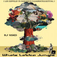 DJ Useo - Whole Lotta Jungle ( Led Zeppelin vs Creedence Clearwater Revival )