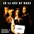 Justin Bieber vs. Ace of Base - The Sorry Sign [Paskal S]