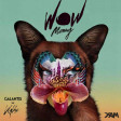Xam - WoW Money (Galantis vs. Kylie Minogue)