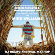 Rudimental vs Mike Williams - These Melody Days (DJ Dumpz Festival Mashup)