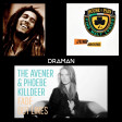 House of pain Vs. Bob Marley Vs. The Avener & Phoebe Killdeer - Jump around the lines